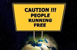 WordPress Migration Danger